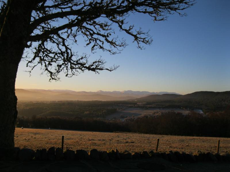 Evening views over the Braes of Castle Grant