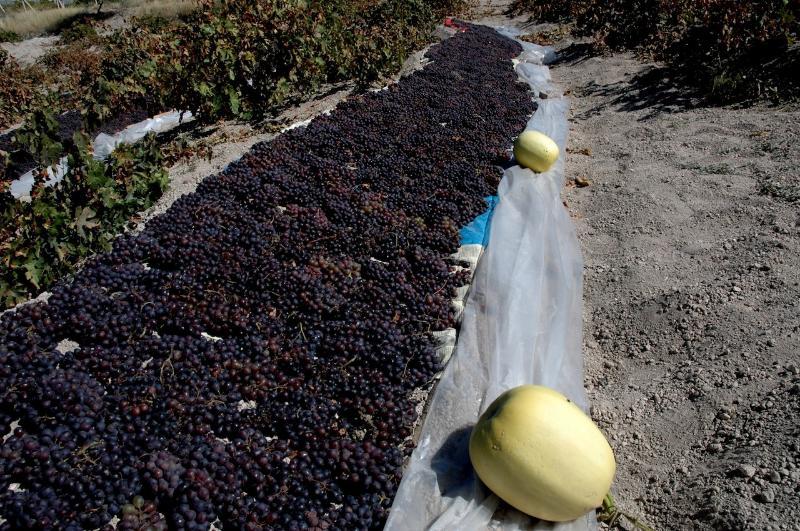 Grapes- taste famous Cappadocian Homemade Wine