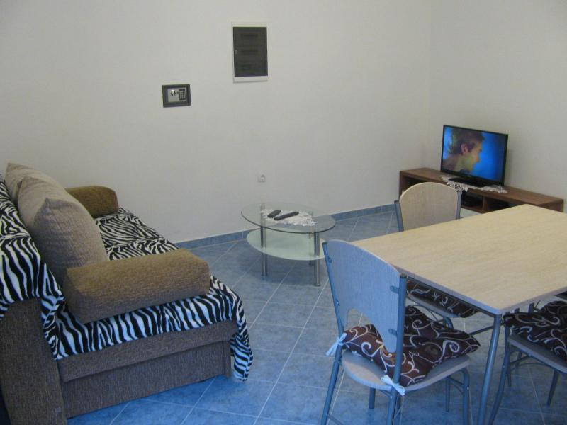 The kitchen and living room with 1 sofa bed for 2 persons