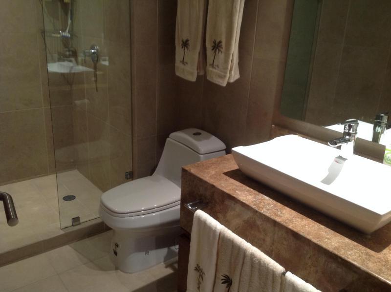 2ème salle de bains avec une grande douche