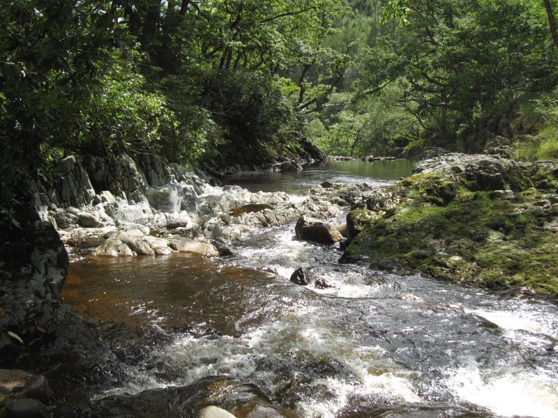 Beautiful Woodland and River Walks