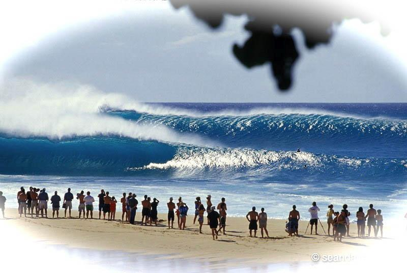 Breathtaking North Shore is just up the coast! Witness spectacular surf, enjoy unimaginable views!