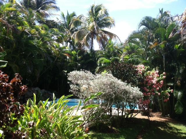 Uitzicht op het zwembad en de tuinen van een van de slaapkamers