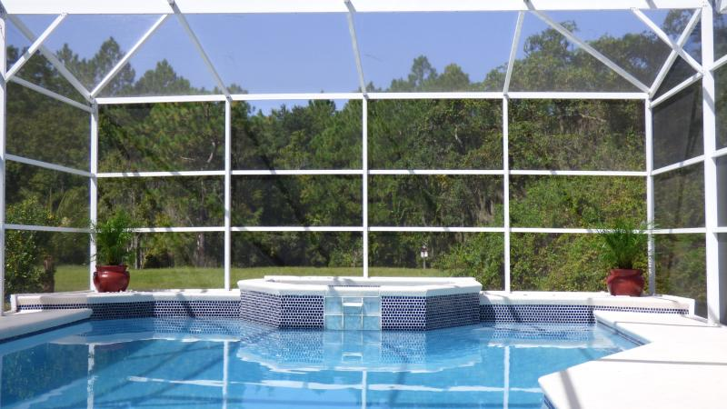 Pool and spa overlooking the beautiful Florida reserve