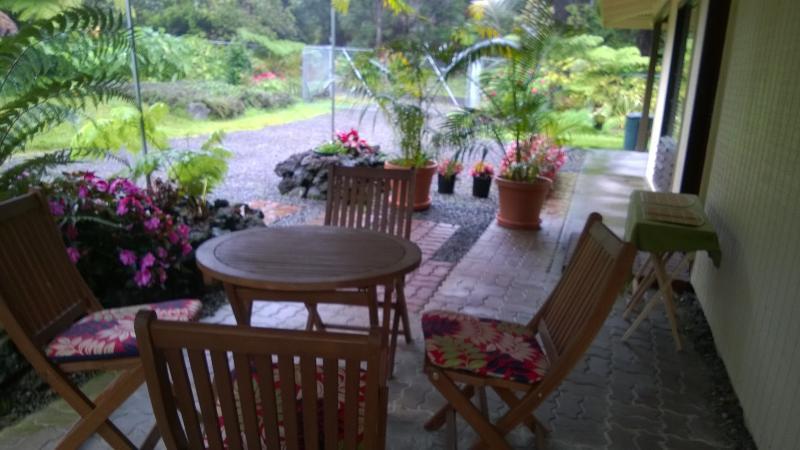 Patio overlooking Rain Forest