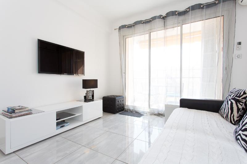 The living room, sofa bed, flat screen TV, access to the terrace, A/C