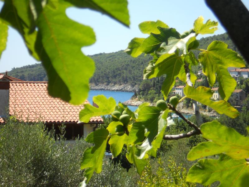 Two-Bedroom Apartment with Balcony with Sea View, holiday rental in Labin