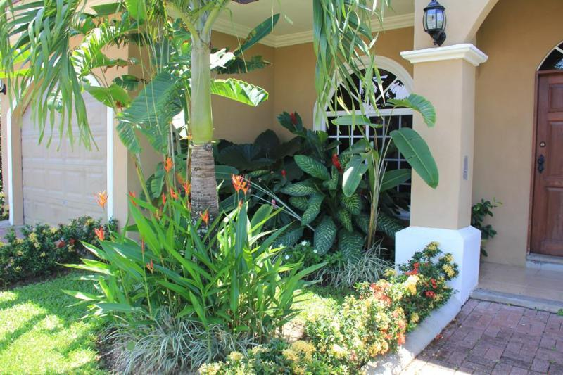 Lush, tropical landscaping!