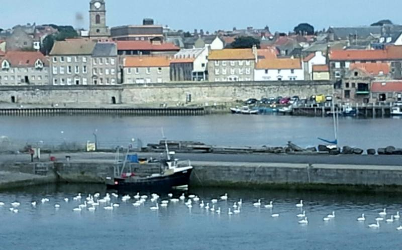 Beautiful view from Mill Wharf to the old town of Berwick upon Tweed