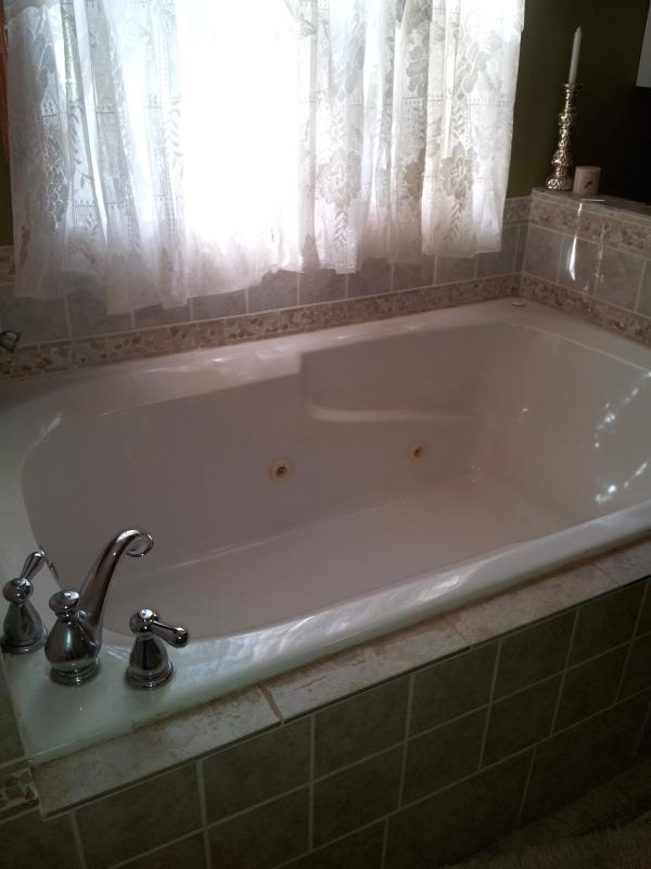 Master bath has spa tub and shower