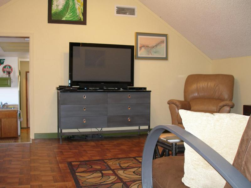 Flat screen TV,  Dish network, DVD player, WIFI, movies, and books for your entertainment
