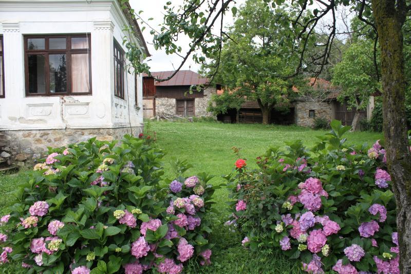 Spacious traditional Romanian house, location de vacances à Dolj County