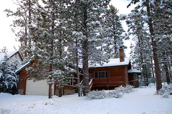Pine Retreat in Winter