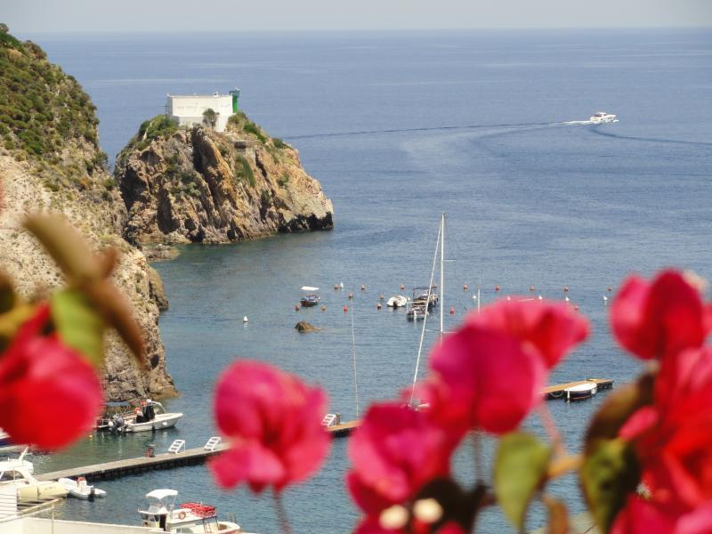 Cavadozza1, location de vacances à Île de Ponza