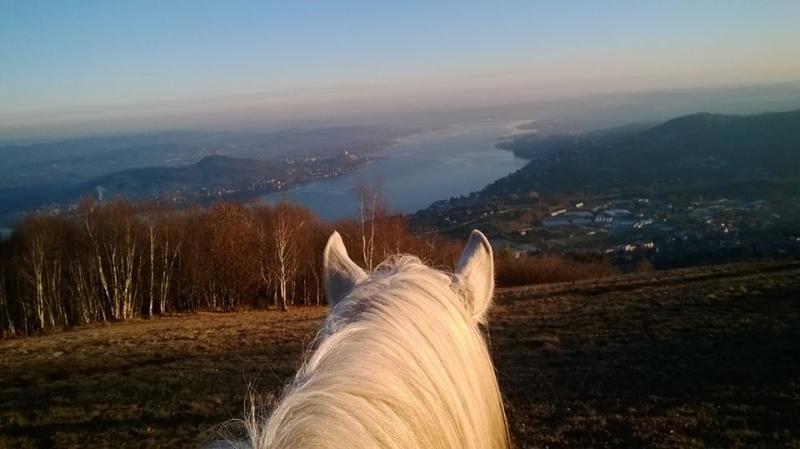 Appassionanti gite a cavallo.