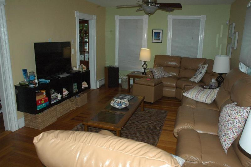 Living room (couch has fold out couch)