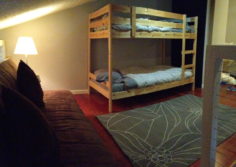 Twin bunk beds and suede pullout futon sofa