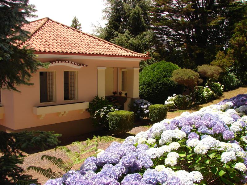 Gardens, flowers, awesome place by Golf Course!!!, vacation rental in Santo da Serra