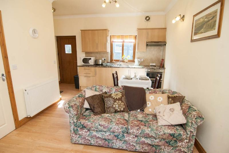 kitchen and lounge with double sofabed