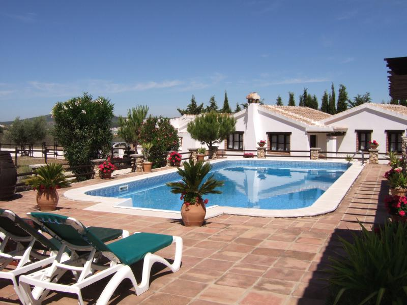 The beautiful 80 sq metre pool and terraces
