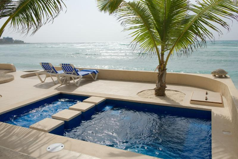 Private pool has a deep side and a shallow side with a bubbler-ideal for children!