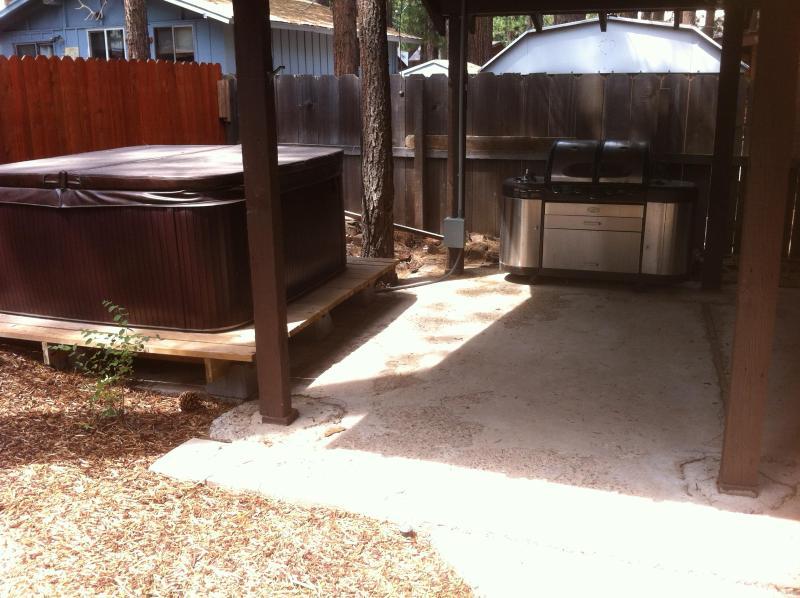 patio arrière-cour, bain à remous, grill