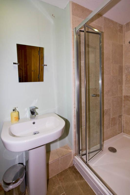 Downstairs Cloackroom with Shower