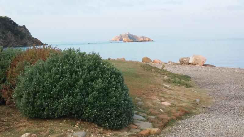 Sparviero island