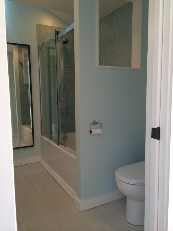 Bathroom has shower over tub.  Beautiful Ann Sacks tile.