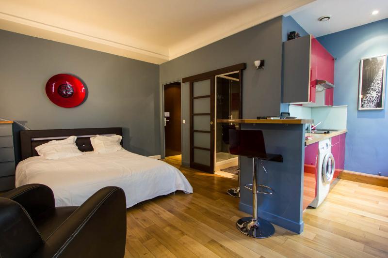 pretigious studio, vacation rental in Paris
