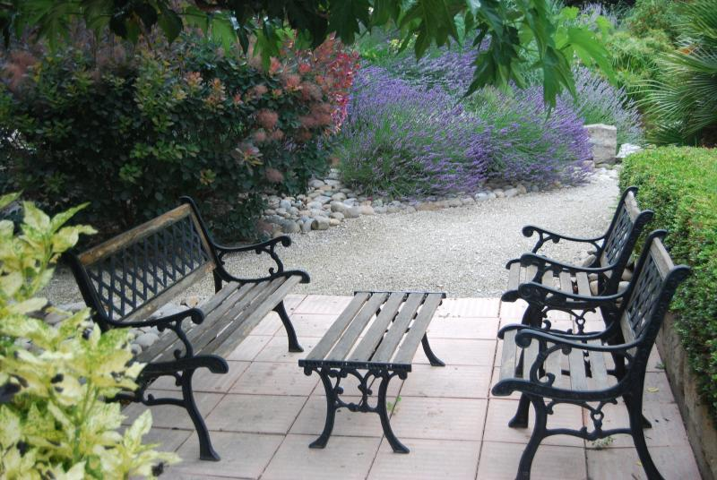 Shaded seating under mulberry tree