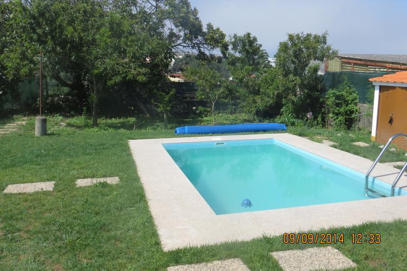 piscina e árvore de fruta no jardim sul-Poente