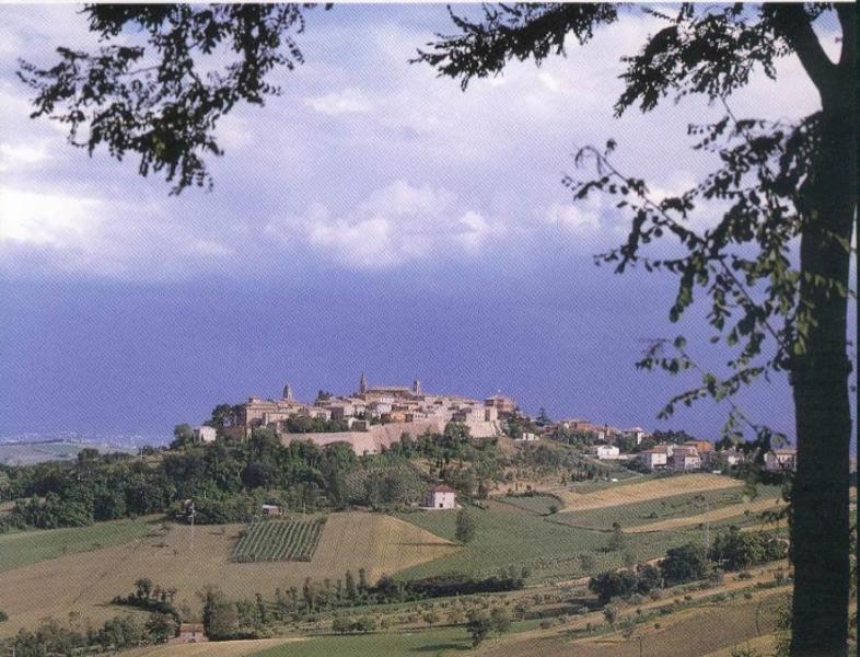 Mondavio - modern villa in beautiful walled town, location de vacances à Fratte Rosa