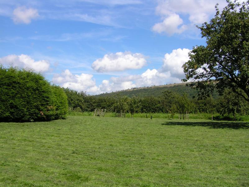 Hampsfell from the Orchard