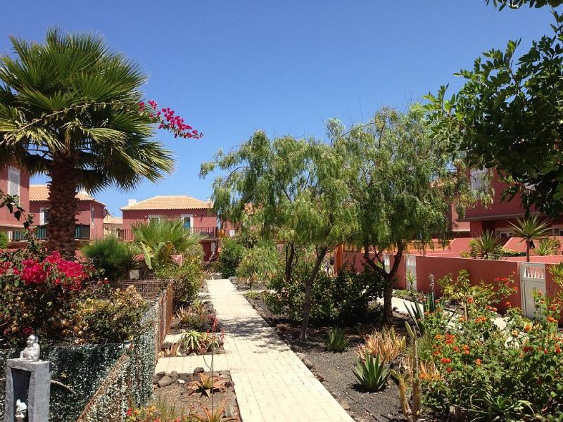 Gardens house Costa Golf, variety of tropical flowers and plants