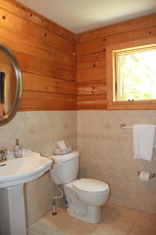 3rd bathroom by kids rooms