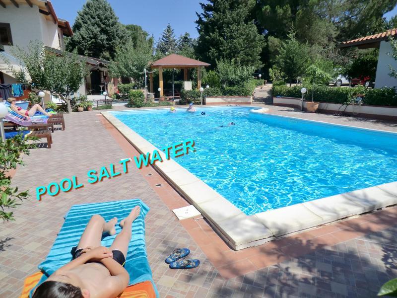SAPPHIRE HOME,PALERMO, POOL 12X6 METERS, SALT WATER, vacation rental in Balestrate