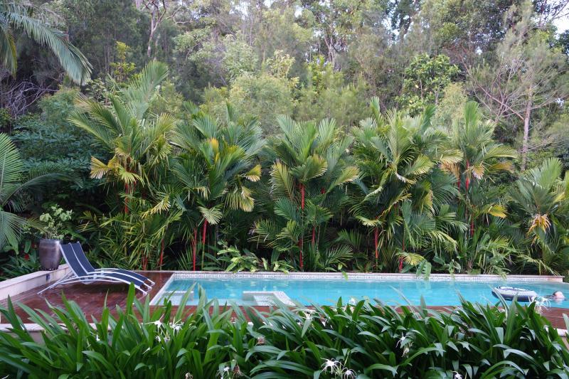 Vue sur le jardin de la piscine