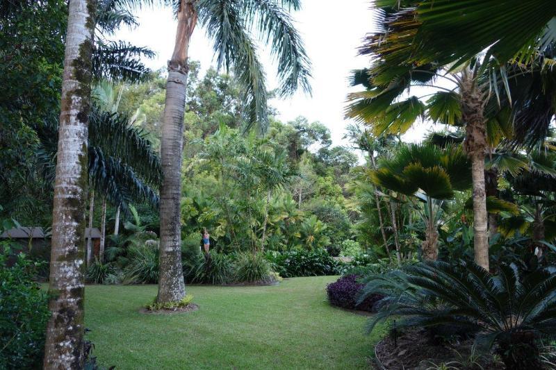 Jardin tropical splendide