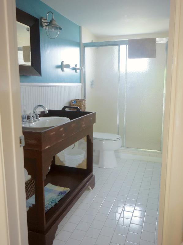 Cabaña estilo maestro baño con encapsulamiento Banco fregadero