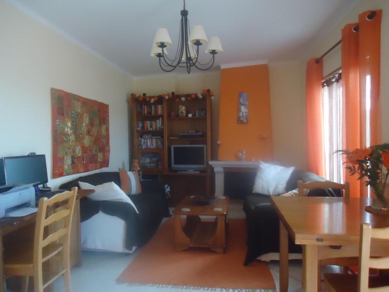 Cosy apartment, holiday rental in Leiria District