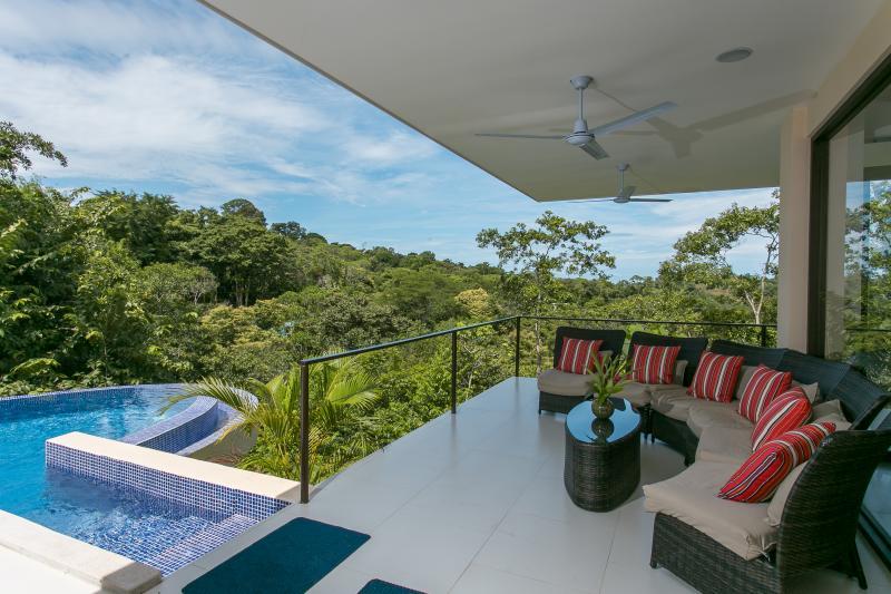 Amazing Canopy View