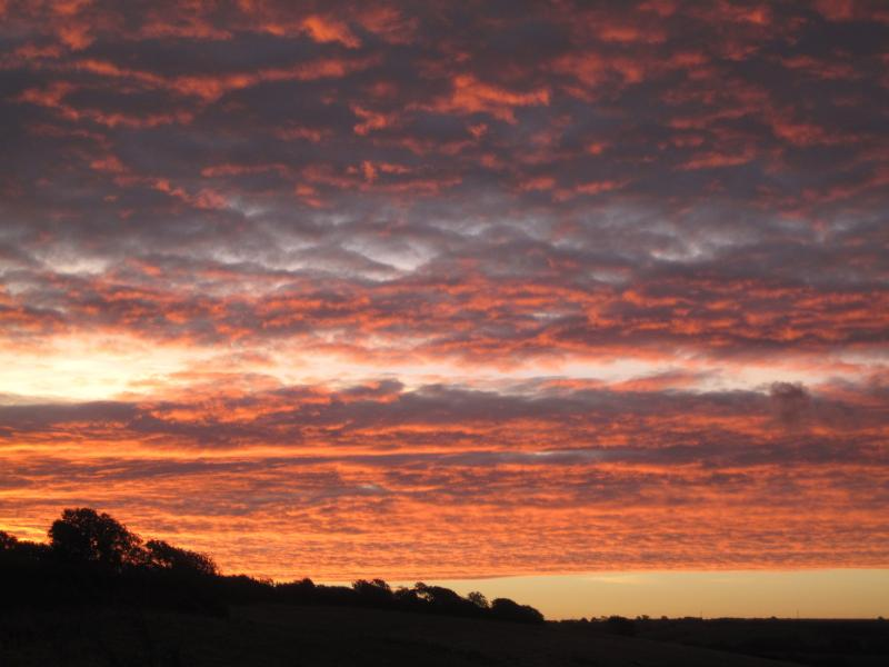 A particularly spectacular morning sunrise at Ham Farm... and then the rain came! Shepherds warning!