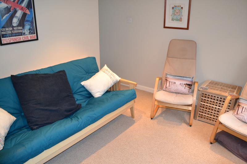 Sofa bed in basement lounge for extra guests.