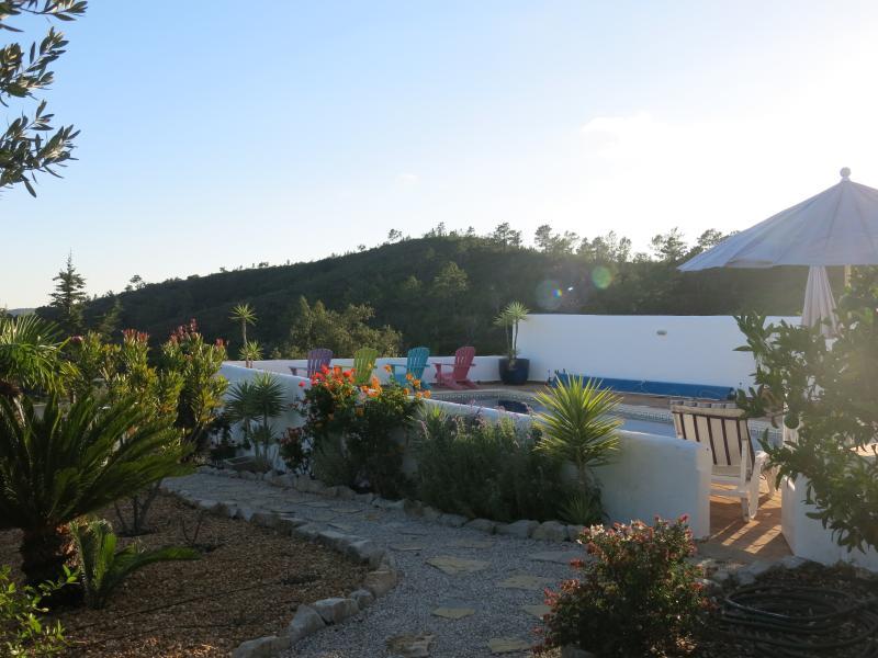 Evening front garden through to pool