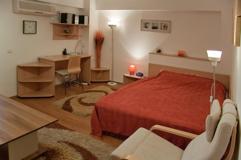 Baneasa Studio, vacation rental in Buftea