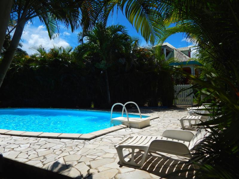 gran piscina de 10 metros por 5 metros con solarium