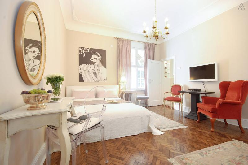 RITZ STUDIO-step from SiliconValley-center, holiday rental in Dorcol