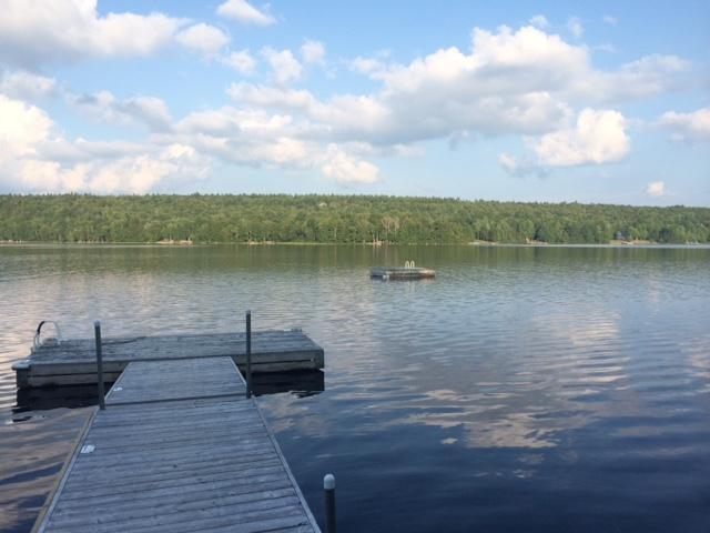 Deep water dock and swim raft