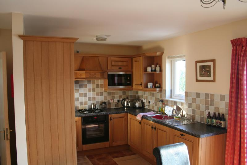 The kitchen area of the Eco-Loft at Tory Bush Cottages